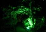 rainforest-retreat-nature-min